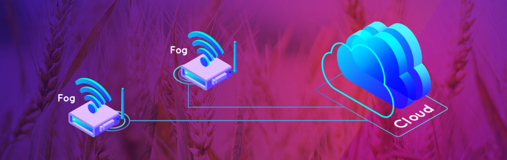 Fog computing: i conigli dovrebbero esserne intimoriti?